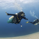 REPORT OF A SCUBA DIVING TRAINING COURSE FOR PARAPLEGICS AND DOUBLE LEG AMPUTEES