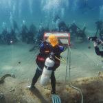 Подводный свет Хануки.
